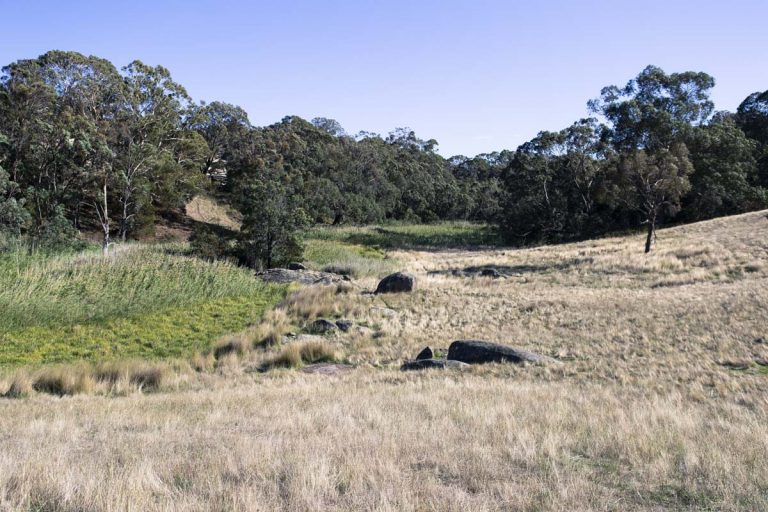 Bald Hill Creek, Strathbogie Walk - Photo by AT Aerial Services