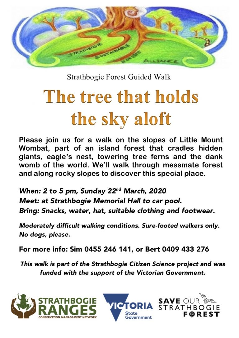 Mt-Wombat-walk-March-22-2020